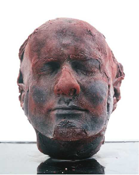 Afbeeldingsresultaat voor Marc Quinn zelfportret hoofd
