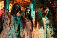 Vorig jaar vond in Gilze voor het eerst het avondvullende Halloween-programma Scream-O-Ween plaats en dit jaar keert het terug. Met Scream-O-Ween beleef je gedurende 3 uur een ijzingwekkend verhaal, gespeeld […]