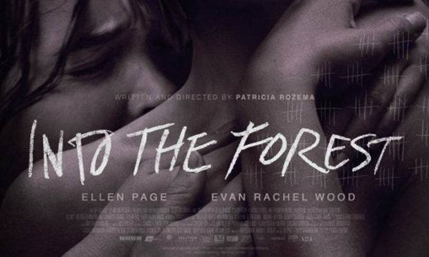 Into the forrest