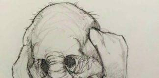 De teaser is een schets van een groteske olifant met een clownslach.